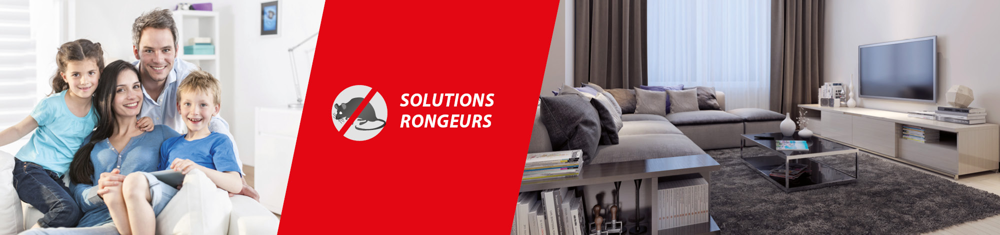 solutions rongeurs